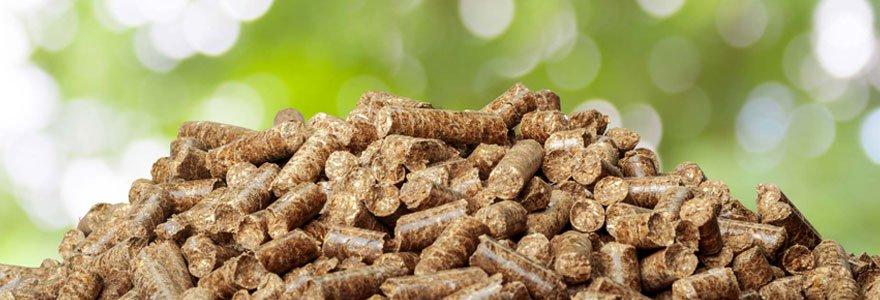 Comment choisir son granulé de bois